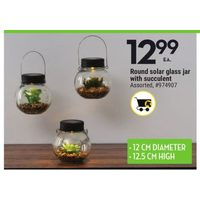 Round Solar Glass Jar With Succulent