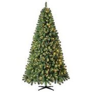 7.5' Green Kennedy Christmas Tree  - $99.98 ($70.00 off)